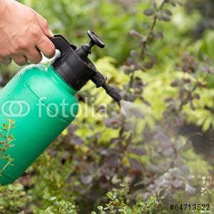Horticulture Spraying